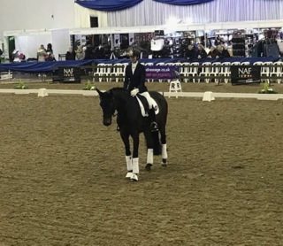 Waverley Dante takes reserve at Elementary Winter Championsh